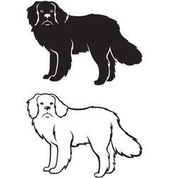 Contour and silhouette of newfoundland dog vector