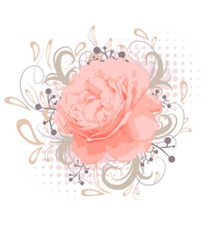 Abstract peony flower vector