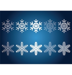 Beautiful snowflakes vector