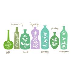 Aromatic herbs essentials vector