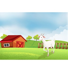 A goat in the farm with a wooden house at the back vector