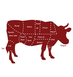 Beef cuts vector