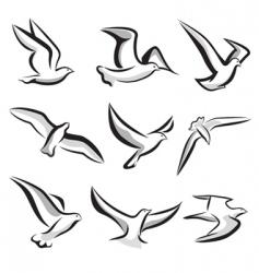 Birds vector