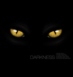 Cat eyes in darkness vector