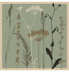 Dry grass vector
