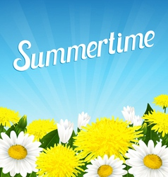 Summer beautiful flowers vector