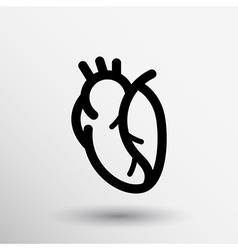 Red human heart icon cardio cardiovascular vector