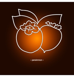 Persimmon in the contours vector