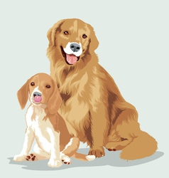 Animal dog vector
