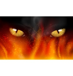 Cats eyes on fire vector