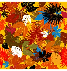 Decorative autumn graphic vector