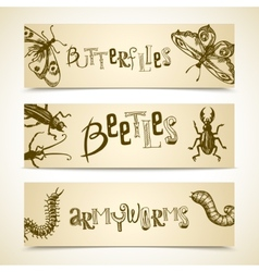 Insects banner set vector