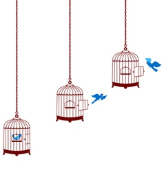 Bird leaving cage and return in the cage vector
