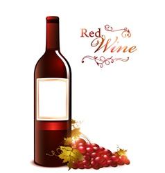 Bottle of red wine vector