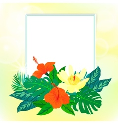 Square card with tropical decor vector