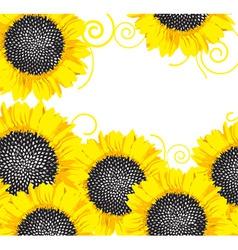 Sunflower border vector