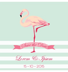Save the date - wedding card with flamingo birds vector