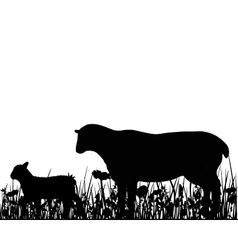 Sheep and lamb in the meadow vector