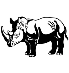 Rhinoceros black white vector