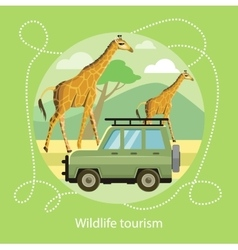 Wildlife tourism icon of traveling vacation vector