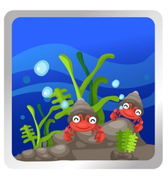 A hermit crab underwater backgroun vector