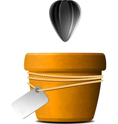 Sunflower seed falls in a flower pot vector