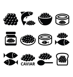 Caviar roe fish eggs icons set vector