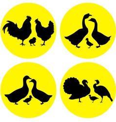 Family farm poultry vector