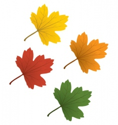 Colorful leaves vector