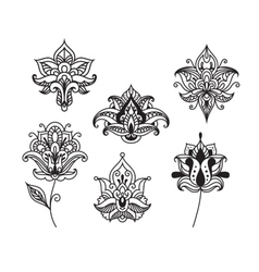 Decorative persian and indian paisley flowers vector