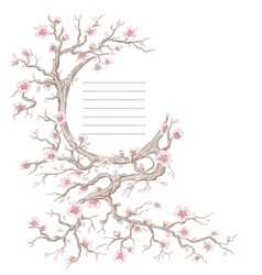 Hand drawn cherry blossom tree vector