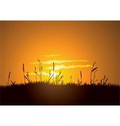 Grassy sunrise vector