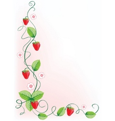 Ripe strawberries and green leaves with flowers vector