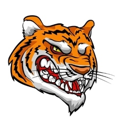 Tiger mascot team label design vector