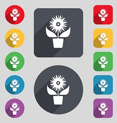 Flowers in pot icon sign a set of 12 colored vector