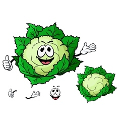 Happy smiling cartoon cauliflower vegetable vector