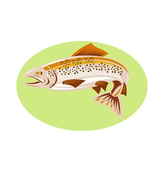 Trout fish jumping vector