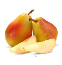 Juicy pear vector