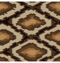 Seamless python snake skin pattern vector