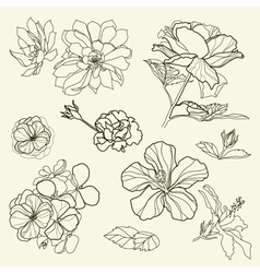 Floral freehand vector