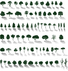 Trees with shadows vector