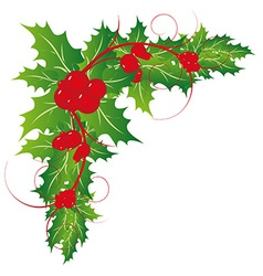 Christmas holy leaves ornament vector