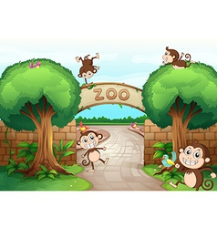 Monkeys in zoo vector