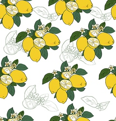 Seamless pattern with lemon vector