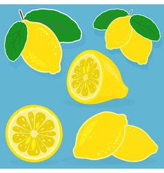 Set of lemon on blue background vector