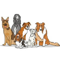 Cute purebred dogs group cartoon vector
