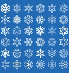 Set of 36 snowflakes vector