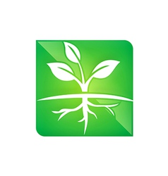 Seed plant ecology root life logo vector