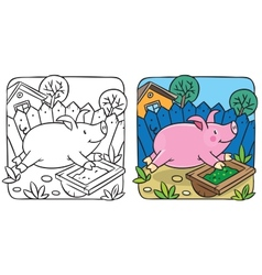 Little pig coloring book vector