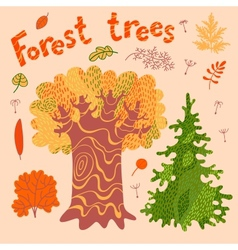 Forest trees bushes leaves vector
